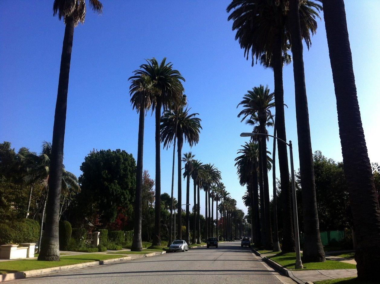 代理出産ならロサンゼルスのミラクルベビー